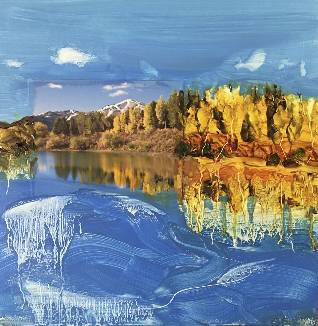 #45 Sun Valley landscape